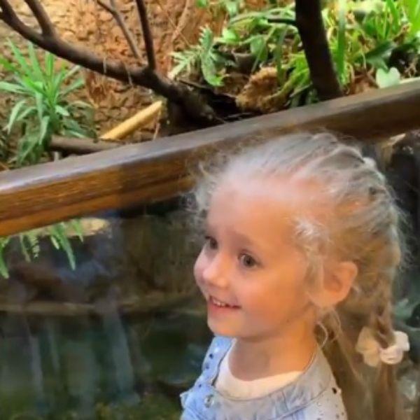 Максим Галкин показал, как он с Аллой Пугачевой и 5-летними детьми сходил в зоопарк