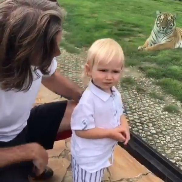 Дмитрий Маликов показал, как сходил с полуторагодовалым сыном в зоопарк