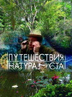 Путешествия натуралиста нтв 2001